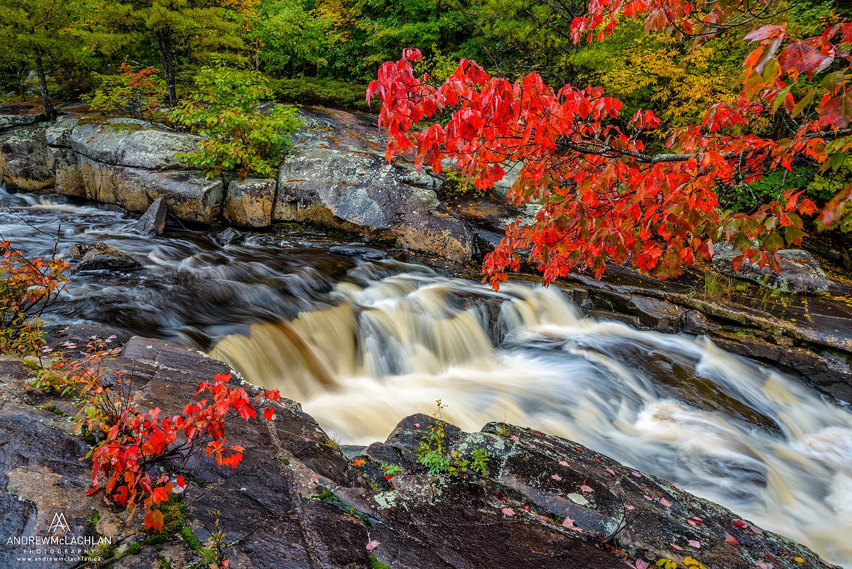 Autumn color on the Rosseau River, Muskoka, Ontario, Canada