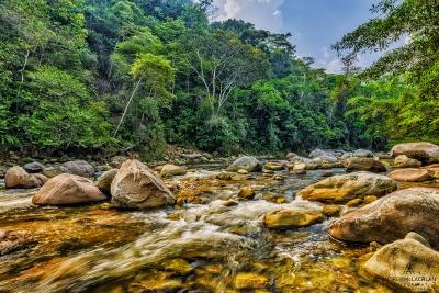 Huacamillo River withhin the Amazon Rainforest, Tarapoto, Peru