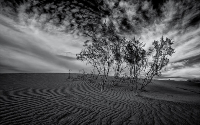 Photo by Ernesto Santos