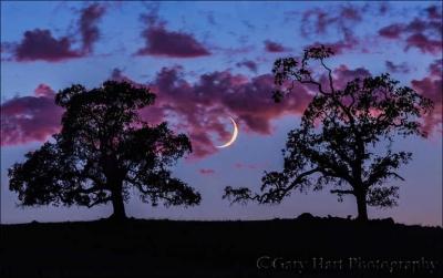 Photo by Gary Hart