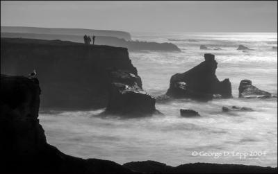 Photo by George Lepp