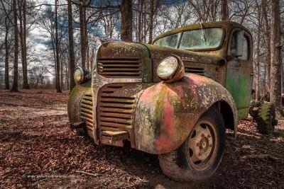 Photo by Greg Kiser
