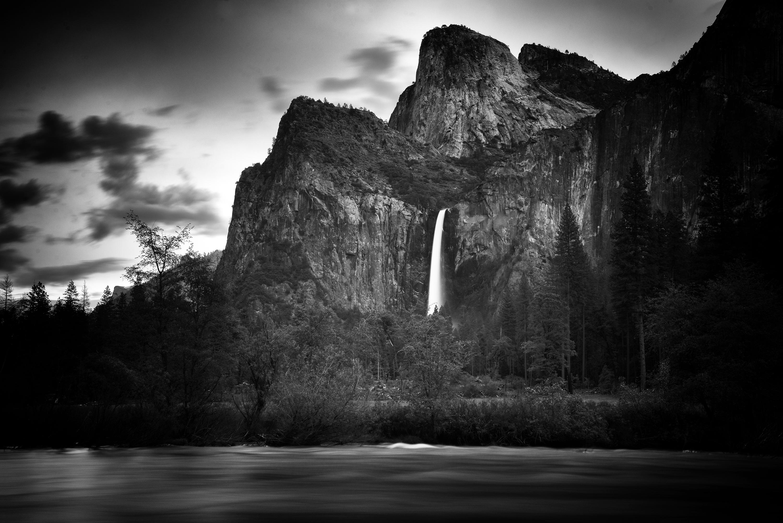Photo by Ronald C. Modra