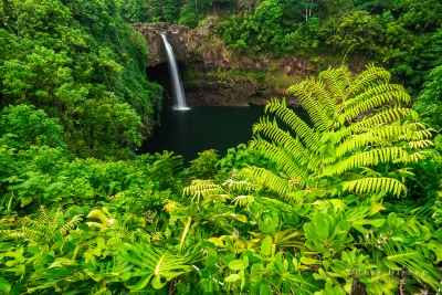 Rainbow Falls, Wailuku River State Park, Hilo, The Big Island, Hawaii USA