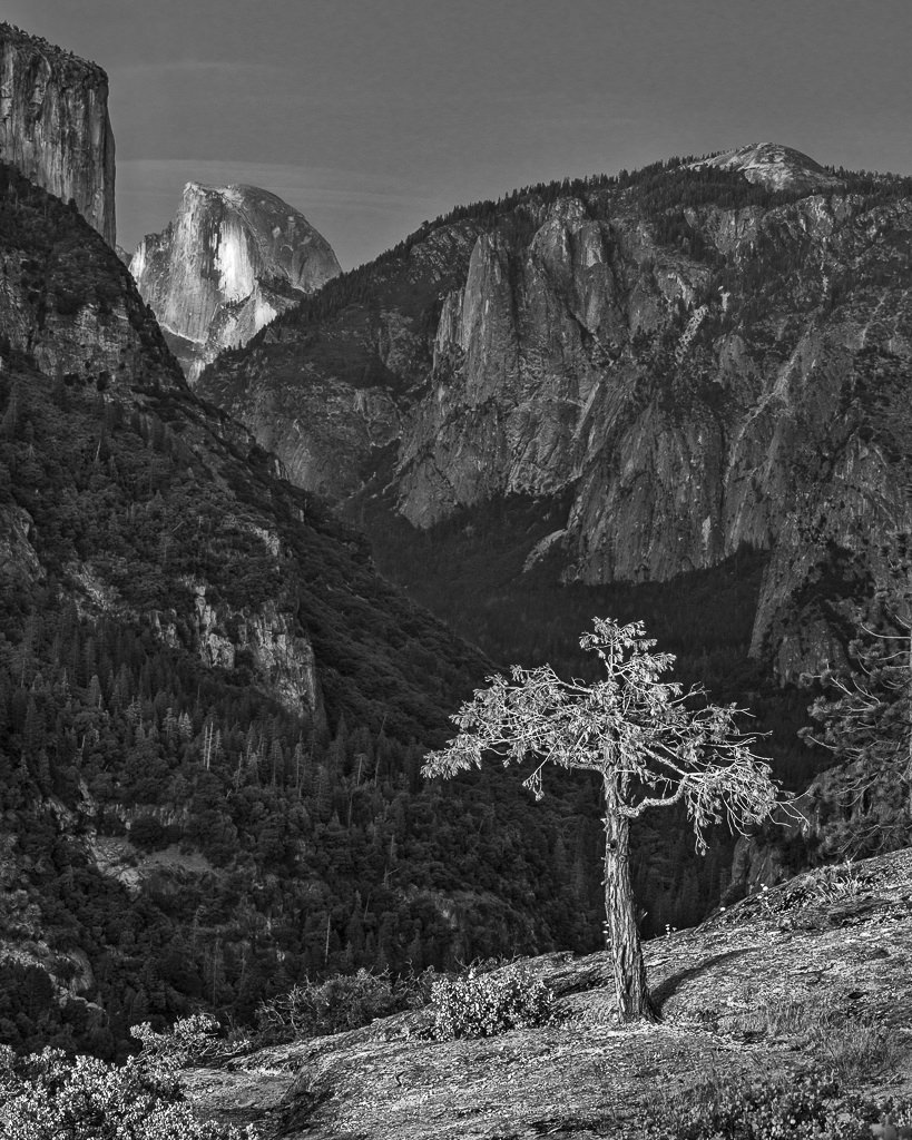 Half Dome Overlook, Yosemite National Park