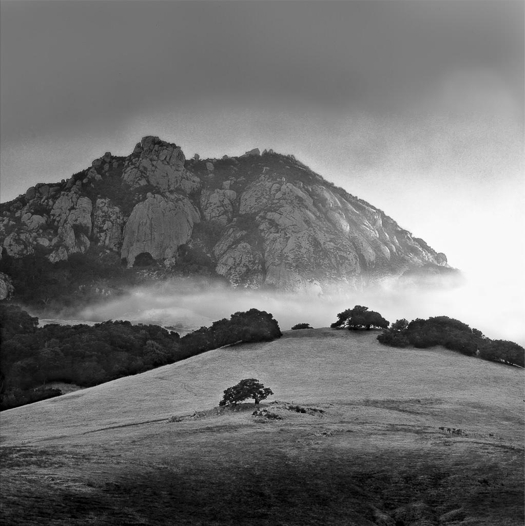 Bishop Peak Fog