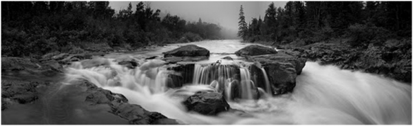 Black and White Photo of a Running Creek