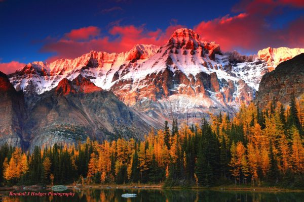 Sunset on Mt Huber As it Towers Over Golden Larch On Shaffer Lake in the Lake Ohara Region of Yoho National Park in Brittish Columbia Canada
