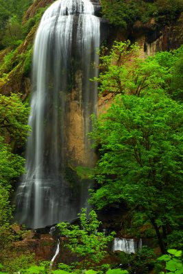 Silver Falls in Golden and Silver Falls State Natural Area in Oregon