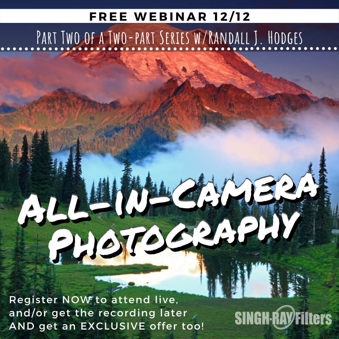 All In Camera Webinar Part 2 with Randall J Hodges